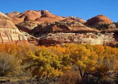 Utah-Escalante-Canyon