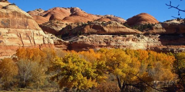 Utah-Escalante-Canyon